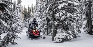 Ski-Doo Expedition SPORT 900 ACE (2019)
