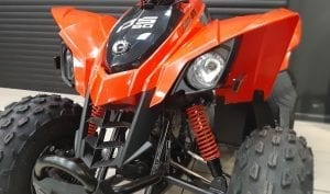 Can-Am DS 90 (2019 м.г.)