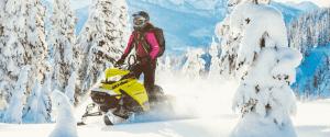 """Ski-Doo Summit SP 146"""" 600R E-TEC (2020)"""