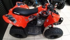Can-Am DS 90 (2020 м.г.)