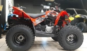 BRP Can-Am DS 90 (2020 м.г.)