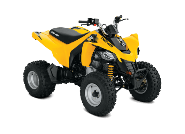 Can-Am DS 250 (2019 м.г.)