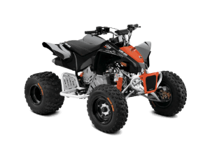 BRP Can-Am DS 90 X (2020 м.г.)